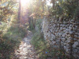 chemin-provence