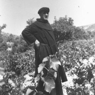 1949, dans les vignes du Comtat Venaissin / In the vineyard near Venasque / 1949, en los campos de viñas de Provenza (Francia)
